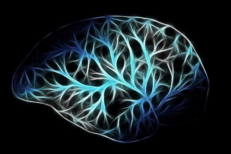 neuropsiquiatria